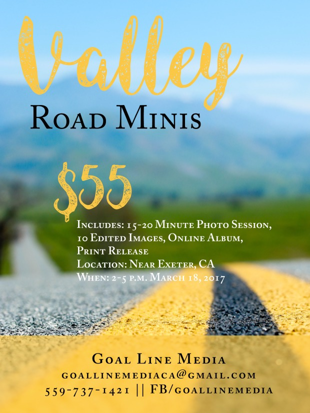 valley-road-minis